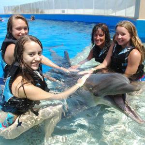 Marineland's Dolphin Encounter